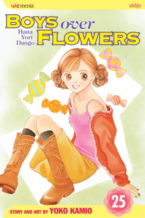 Boys Over Flowers, Volume 25