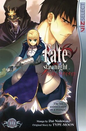 Fate/stay night Vol. 10: Fate/stay night, Volume 10