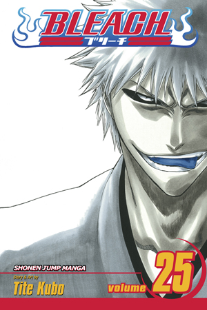 Bleach Vol. 25: No Shaking Throne