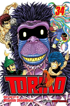 Toriko Vol. 34: King at Play!!