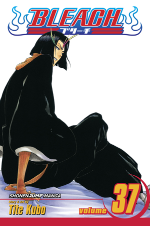 Bleach Vol. 37: Beauty Is So Solitary