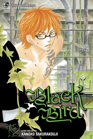 Black Bird Vol. 12: Black Bird, Volume 12