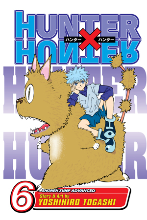 Hunter x Hunter Vol. 6: NEN SENSE
