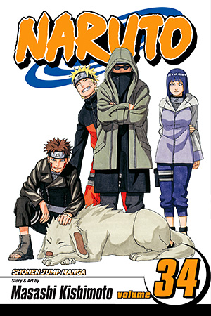 Naruto Vol. 34: The Reunion