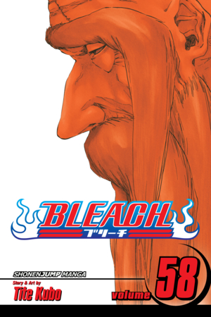 Bleach Vol. 58: The Fire