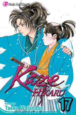 Kaze Hikaru, Volume 17